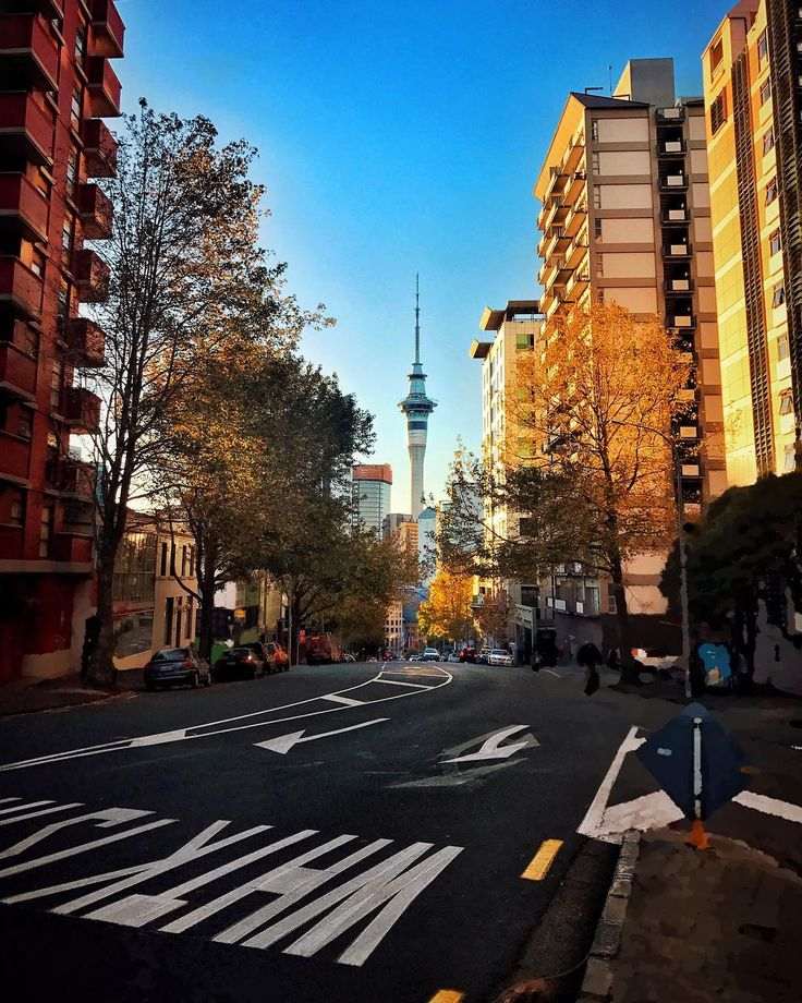 This city just skipped the autumn and entered the winter directly. - - - #sky #iphone #iphoneonly #iphoneography #iphone7 #iphone7plus #picture  #pictures #beautiful #phototoday #nz #newzealand #auckland #aucklandcity  #city #cityview #cloud #day #view #skytower #creative #views #autumn #winter
