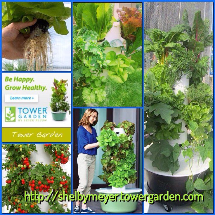Delightful 139 Best Juice Plus And Tower Garden Images On Pinterest | Tower Garden,  Towers And Juice