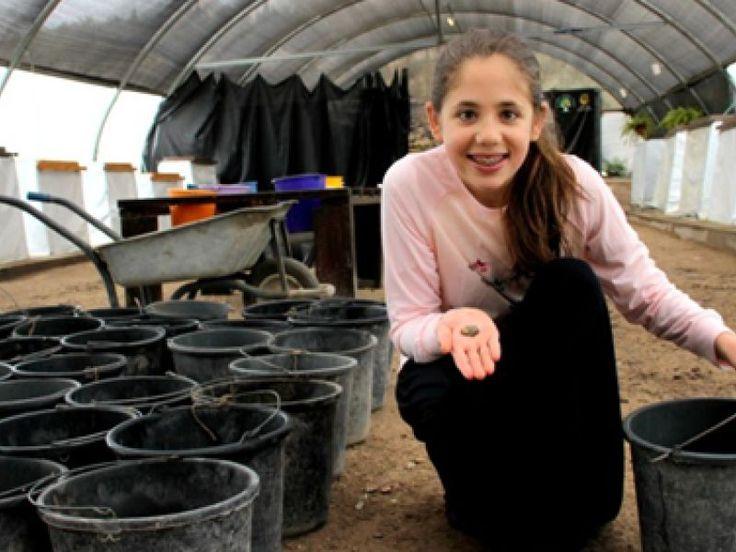 """""""Célébrer Pâques cette année aura une signification spéciale pour moi"""". Neshama Spielman, 12 ans aujourd'hui, avait joué les apprenties archéologues en participant il y a quatre ans au projet """"Temple Mount Sifting"""", qui permet à des volontaires d'engager des fouilles sur l'un des sites les plus sacrés du judaïsme à Jérusalem. En remuant la terre du parc national de Zurim Valley, la petite fille avait fait une incroyable découverte : une amulette égyptienne portant l'inscription d'un…"""