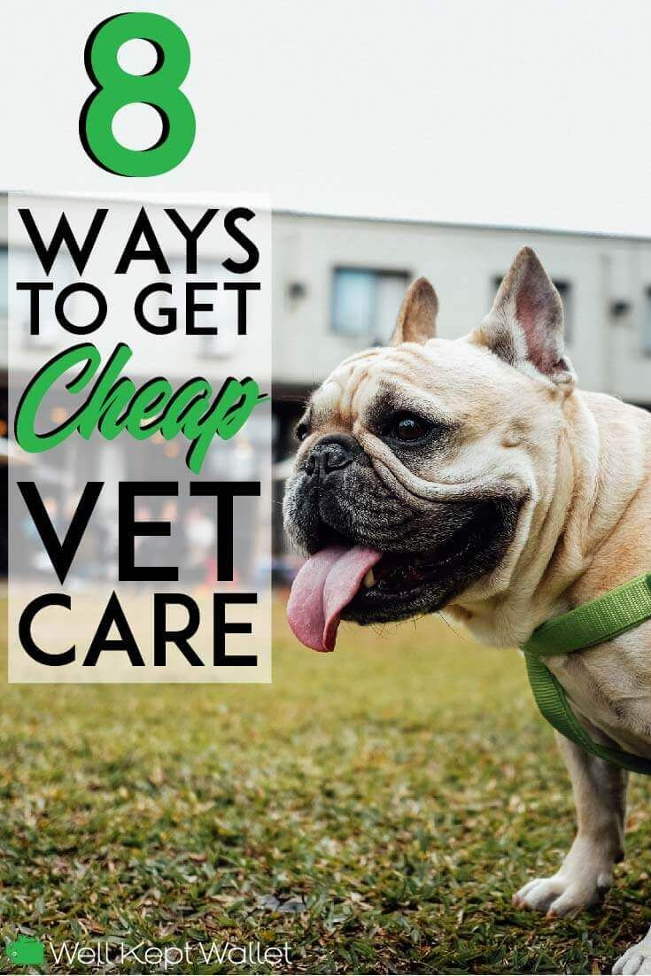 8 Ways To Get Cheap Vet Care Near Me Vets Care Pets