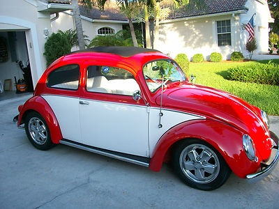 1000+ ideas about Vw Bugs on Pinterest | Volkswagen ...