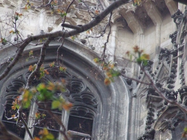 Gothic and the Tree