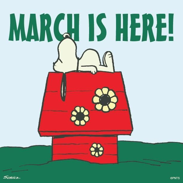"44.2 tuhatta tykkäystä, 197 kommenttia - Snoopy And The Peanuts Gang  (@snoopygrams) Instagramissa: ""Hello, Mar… 