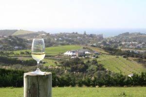 Cafayate , tierra del sol y buen vino