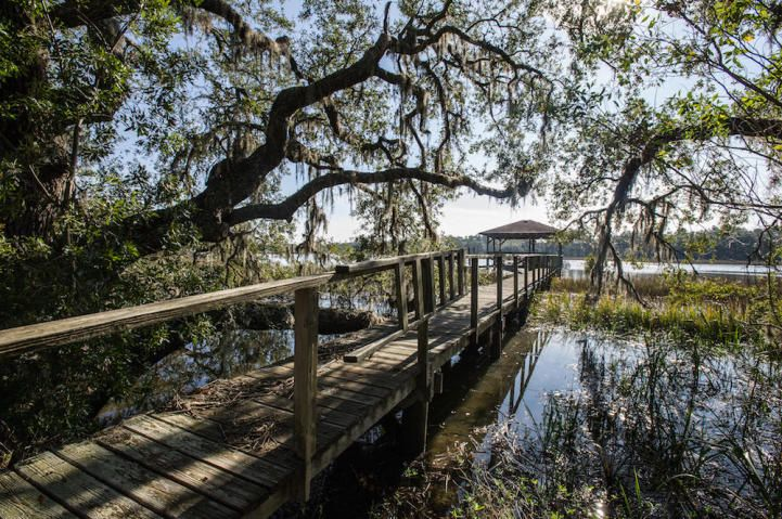2.2 acre private waterfront home for sale on Johns Island, SC.