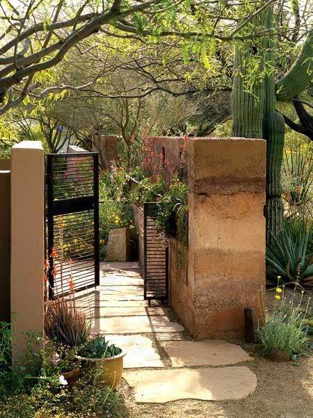 65 best images about desert landscaping on pinterest