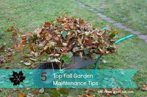 Top 5 Fall Garden Maintenance Tips to Make Spring Gardening Easier