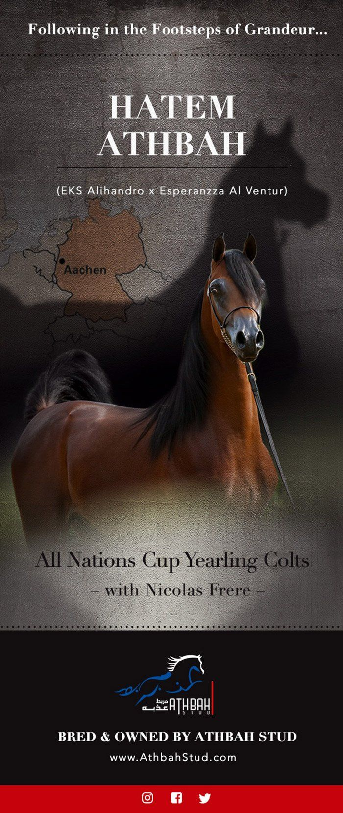 Hatem Athbah - All Nations Cup Yearling colts contender