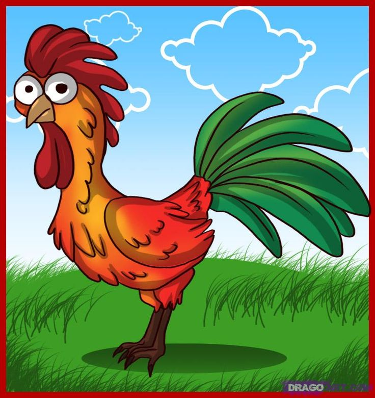 How to Draw a Cartoon Rooster