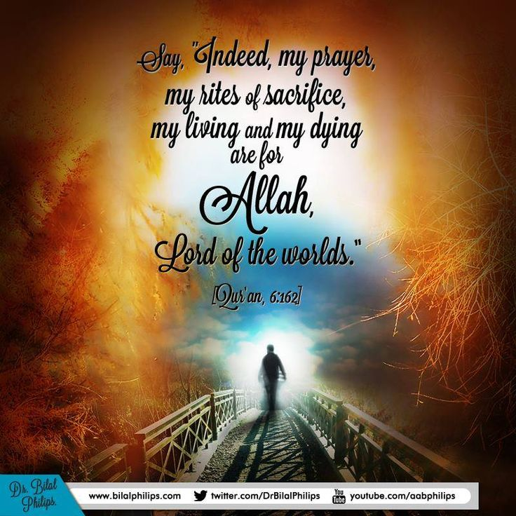 Best Places In The World To Live As A Muslim: 24 Best Images About ™�♡Islamic Quotes 2 And More♡♡ On