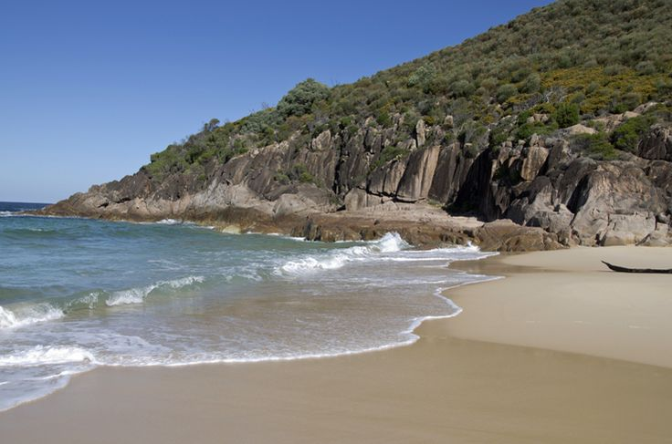 Wreck Beach. Just a short and pleasant bush walk (15 mins) up the track from Verona Road, Shoal Bay, you will find this beautiful treasure. #portstephens #wreckbeach