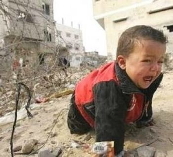 For Those Who Call For Animal Rights .. What about Human Rights??? If You Think That Muslim And Arab people are Terrorist What You Call Israel and America actions '??! War Child in Gaza #حسبنا_الله_ونعم_الوكيل