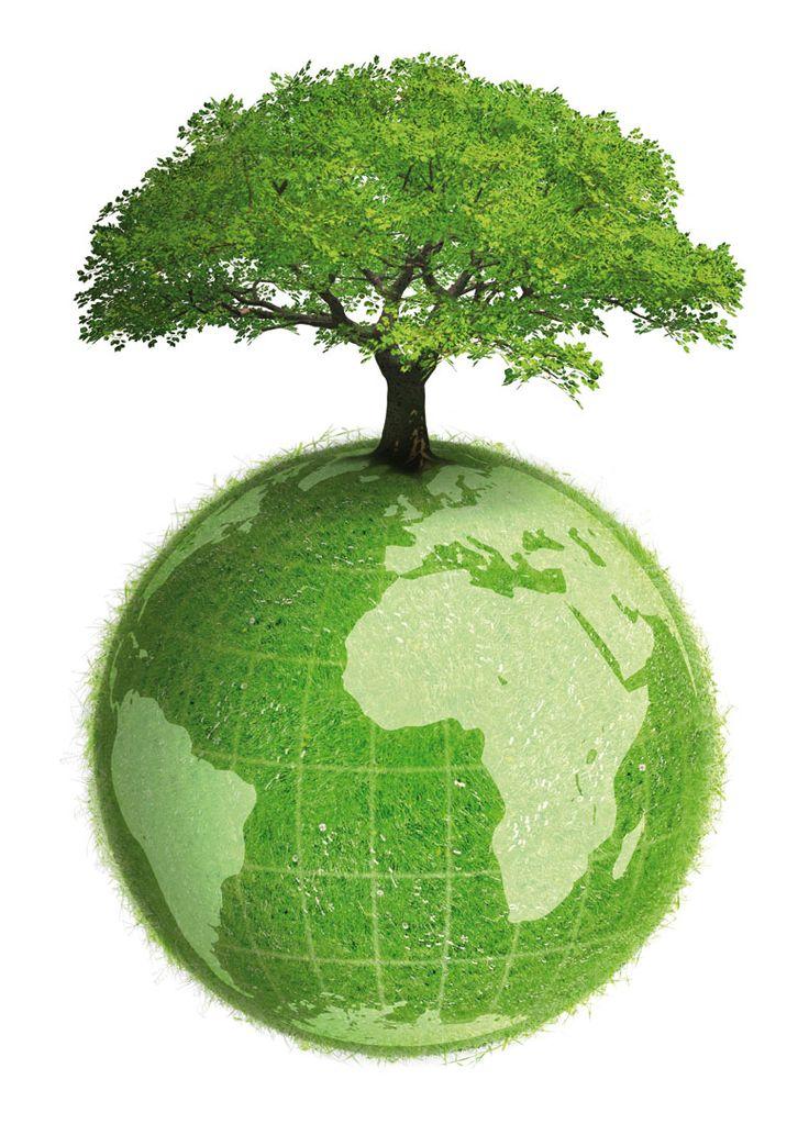 Conjunto de valores naturales, sociales y culturales