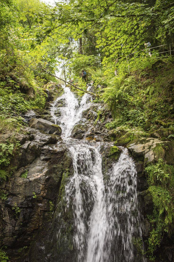 Ein abwechslungsreiches Naturerlebnis erwartet Sie auf dem Genießerpfad Wasserf …   – Der Herbst im Hochschwarzwald