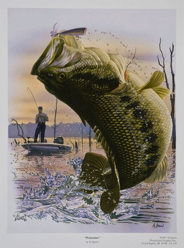 Fishing Was His Life Especially For Those Lunker Big Mouth Bass