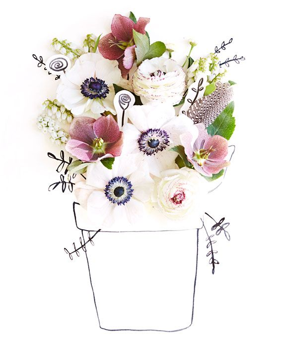 17 Best Ideas About May Flowers On Pinterest