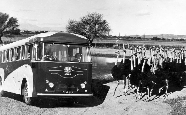 https://flic.kr/s/aHsjnvwcoz   Coach & Road Transport   Acknowledgement in respect of all the images - except where otherwise stated - is to The Publicity and Travel Department of The South African Railways and Harbours.  Kindly refer to 'HiltonT@Flickr', as the source.