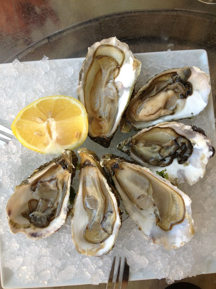 Ostriche , oysters, oesters