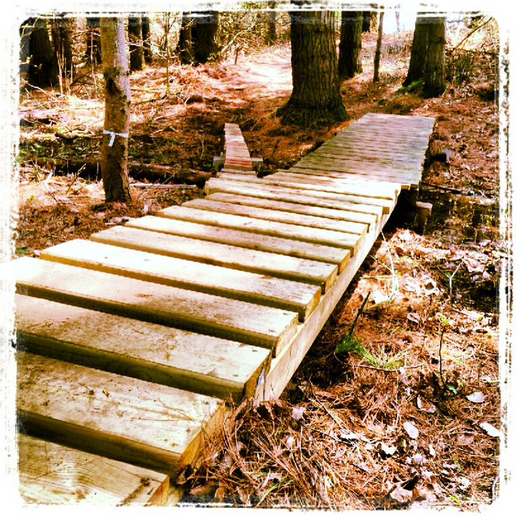 Try our Gnarly Trail this summer! #getyourrideon #mtb #oro #simcoecounty #barrie #orillia #ridelife #mountainbike #ontario #hardwoodskiandbike #hardwoodhills