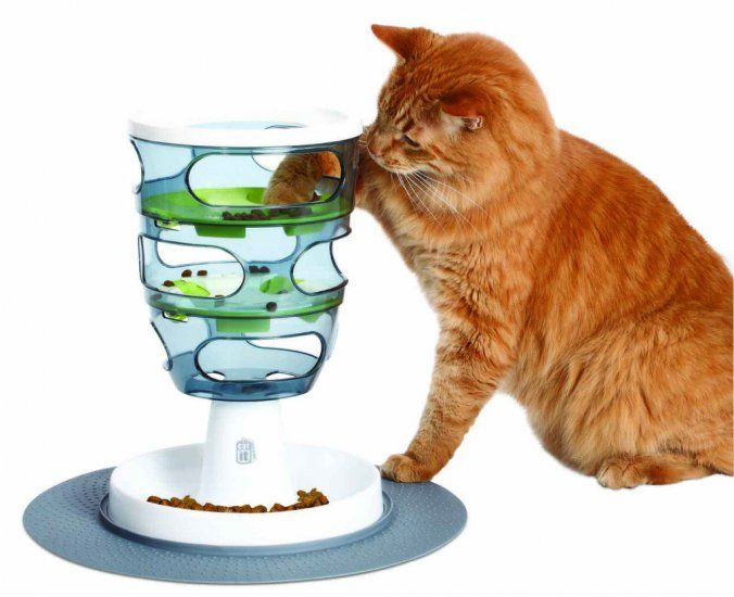 12 Christmas Gift Ideas for your cat - Dr Belinda The Vet