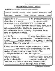 fossils worksheet 1