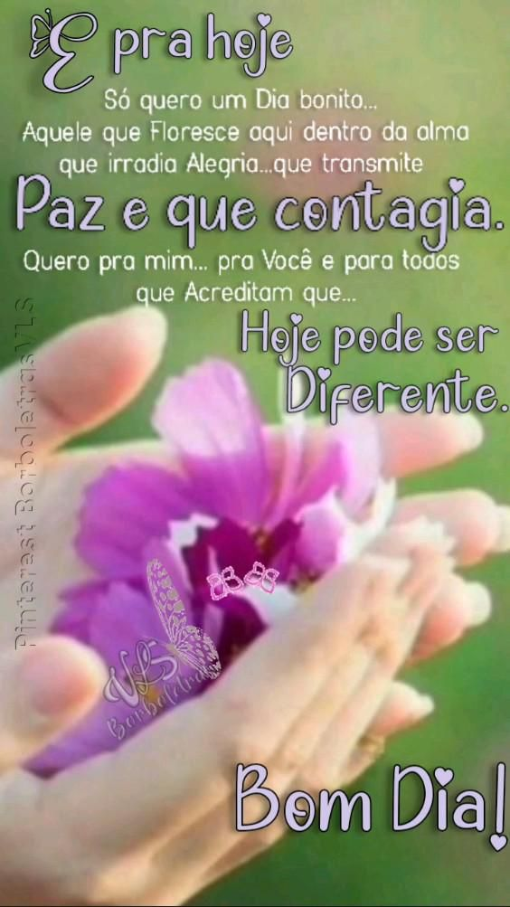 Good Morning, Videos, Thoughts, Best Wishes Messages, Good Morning Quotes, Fruit Painting, Rosario, Tags, Pictures