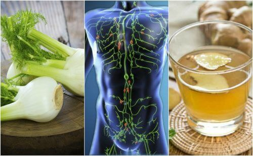 Pensate che il vostro corpo sia troppo carico di tossine? È giunto il momento di depurare il sistema linfatico! Scoprite le migliori tisane a tale scopo.