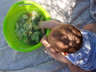 YaiYoga: La concentración en los bebés. Actividades para desarrollarla.