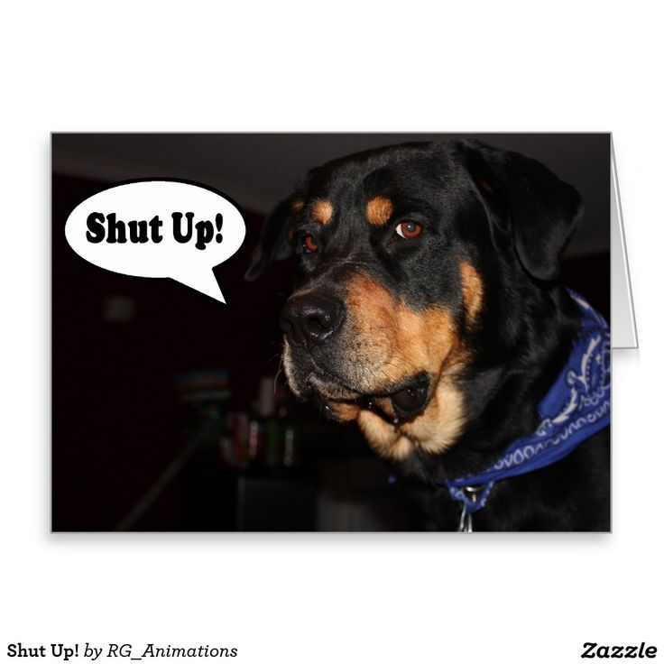 Shut Up! Greeting Card