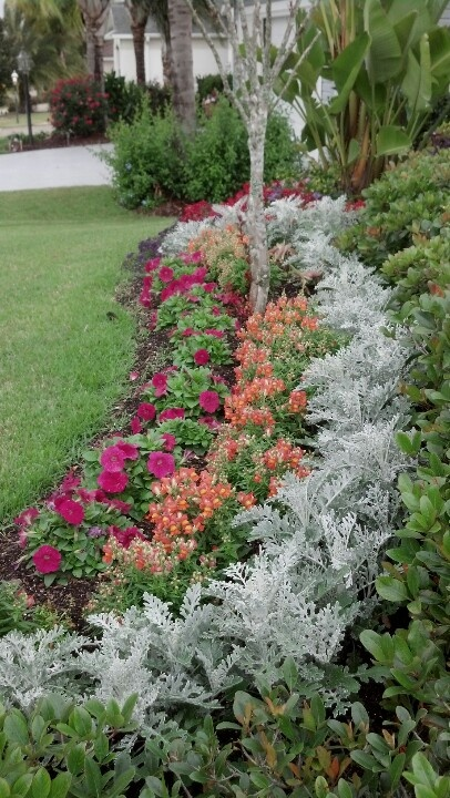 17 best images about front yard ideas on pinterest for Flower for front yard gardens