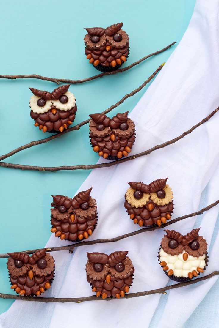 Why make ordinary cupcakes when you can make these easy owl cupcakes. And you can make it with your favorite cake box mix and store bought frosting.