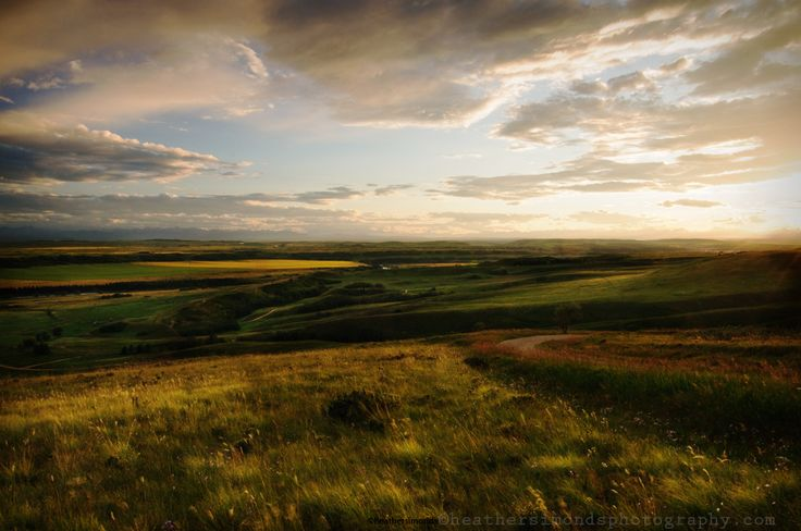 Late Evening Summer Landscape #Glenbow #photography #Alberta