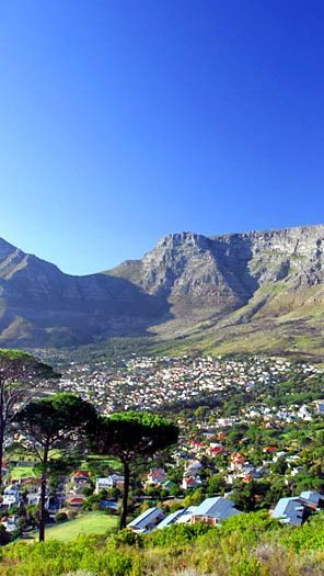Cape Town Nature.South Africa.