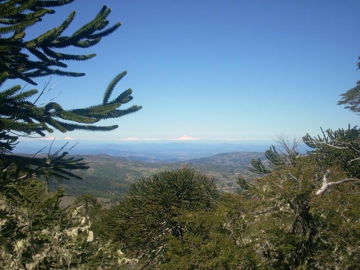 Piedra del Águila, Chile.