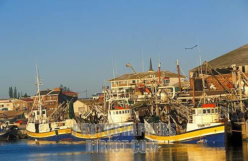 West African Seascapes | ... Western Cape , Lamberts Bay , West Coast . South Africa stock photo