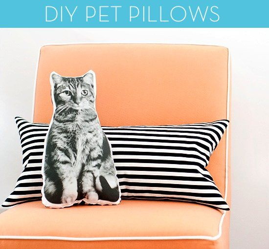 Pin for Later: 28 DIY Gifts For the Cat-Lovers in Your Life No-Sew Cat Pillow Find a picture of your friend's cat (or her favorite breed) and print it on a pillow. She'll love how personal this gift is.