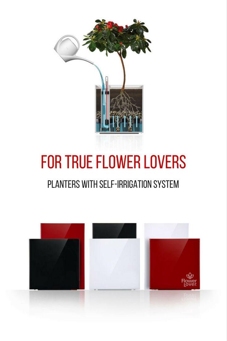 Are you a flower lover? Is your home full of planters? Then, these ones will save your watering worries. With innovative chamber self-watering system. Click the link to see our full offer of designer flower pots.   Květináč a pokojovky. Nebojte se osvěžit své květiny v parném počasí. Tyto květináče jsme vyvinuli speciálně pro všechny milovníky květin. Inovativní komorový samozavlažovací systém zajistí, že vám vaše pokojovky nikdy neuschnou. Mrkněte se na naši celou nabídku přechodem na…