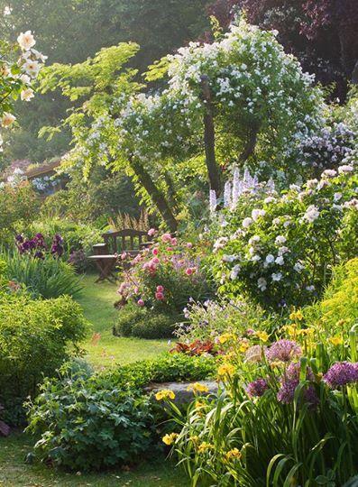 peaceful cottage garden