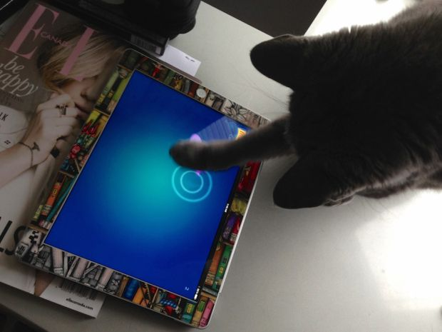 Zut, playing Friskies' Cat Fishing app. Our five favourite feline apps. #cats