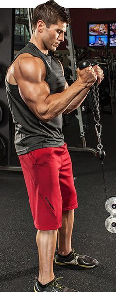 Bodybuilding.com - Arm Workouts For Men: 5 Biceps Blasts