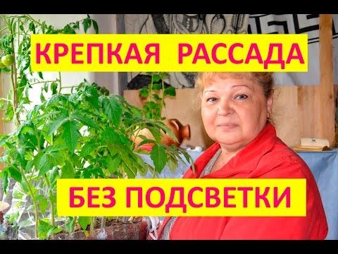 Сундук ПОЛЕЗНОСТЕЙ : LiveInternet - Российский Сервис Онлайн-Дневников