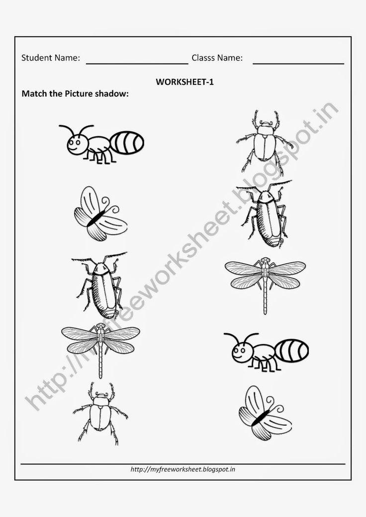 free printable worksheets for nursery kindergarten senior kg junior kg for insects matching. Black Bedroom Furniture Sets. Home Design Ideas