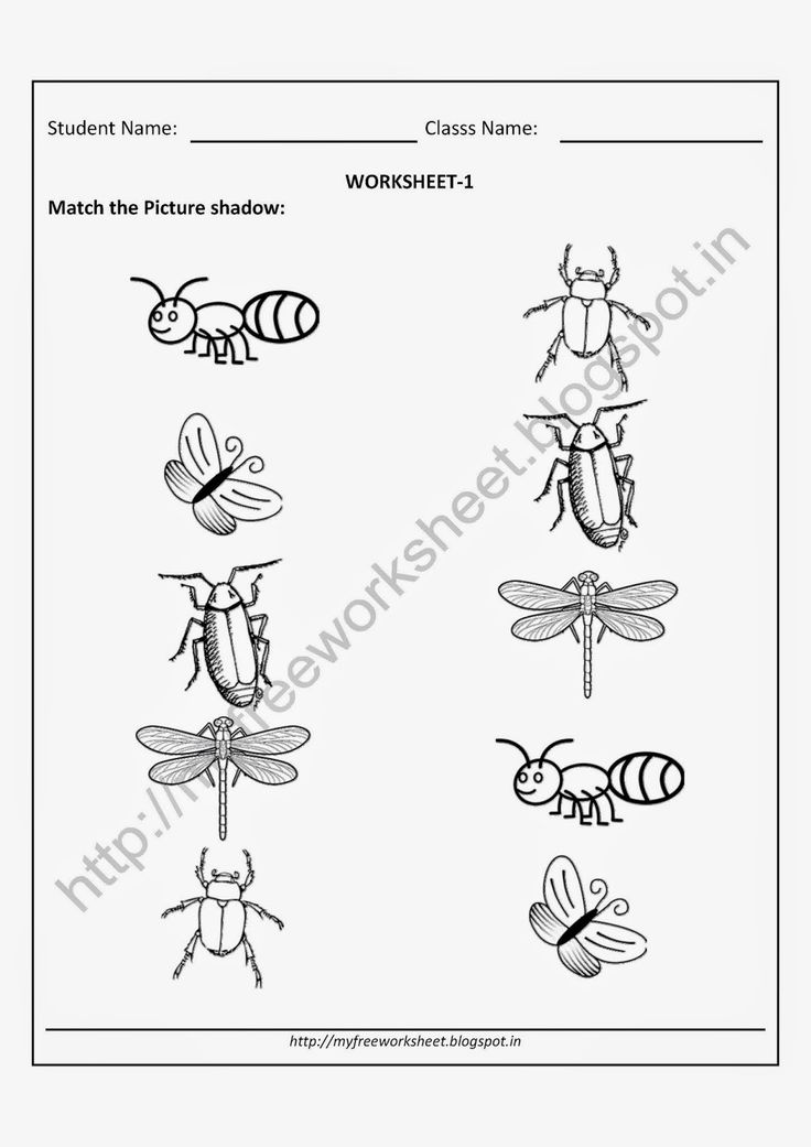 free printable worksheets for nursery kindergarten senior kg junior kg for insects matching. Black Bedroom Furniture Sets. Home Design Ideas