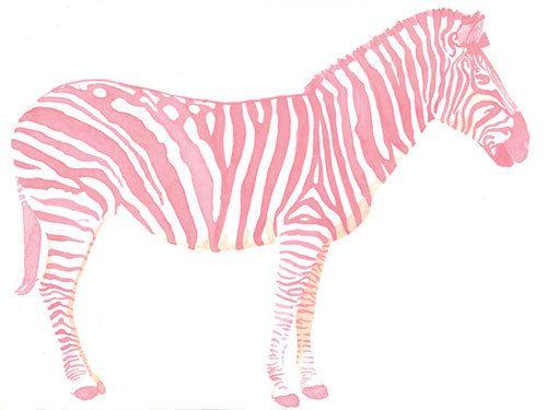 8 x 10 Pink Zebra Watercolor Giclee Art Print by THEAESTATE, $22.00