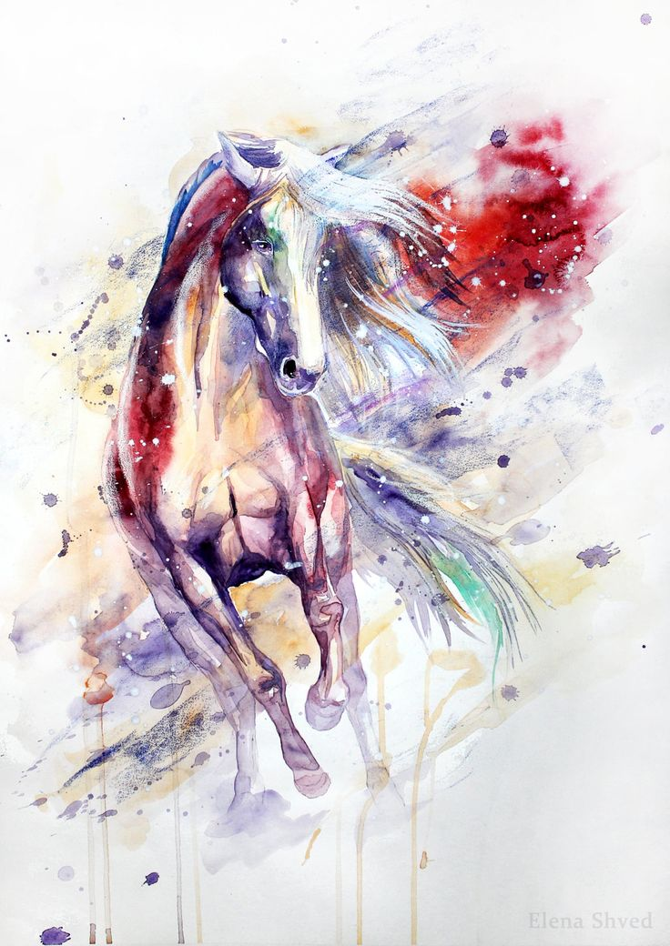 Elena Shved watercolour horse