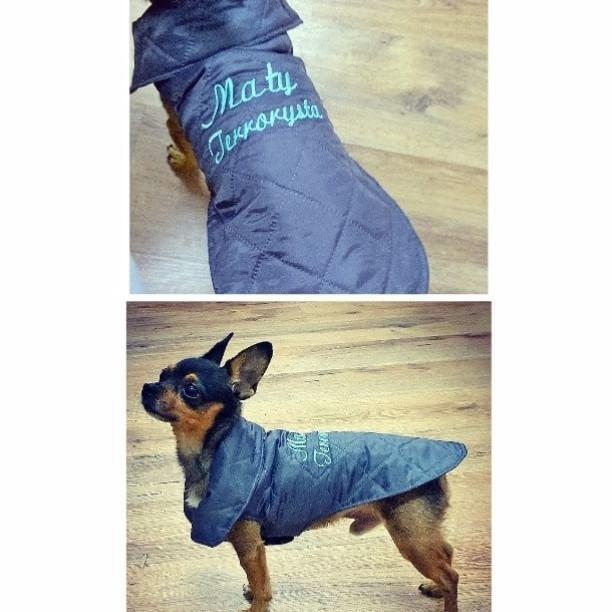 #sewing #coat  #winter #embroidery #name #dedication #cat #quilted #ubranie #pies #kot #zima #fashion #kurtka #pikowana #akcesoria #animals #szyjemy #haft #design