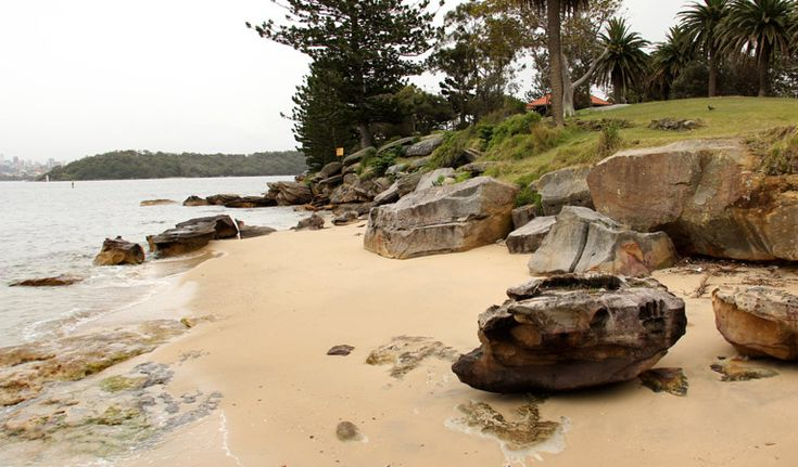 The beach at Shark Island, Sydney Harbour National Park.   Located at the mouth of Rose Bay, Shark Island gets its name from its shape - not its wildlife! Known as a great spot for fishing and picnicking.