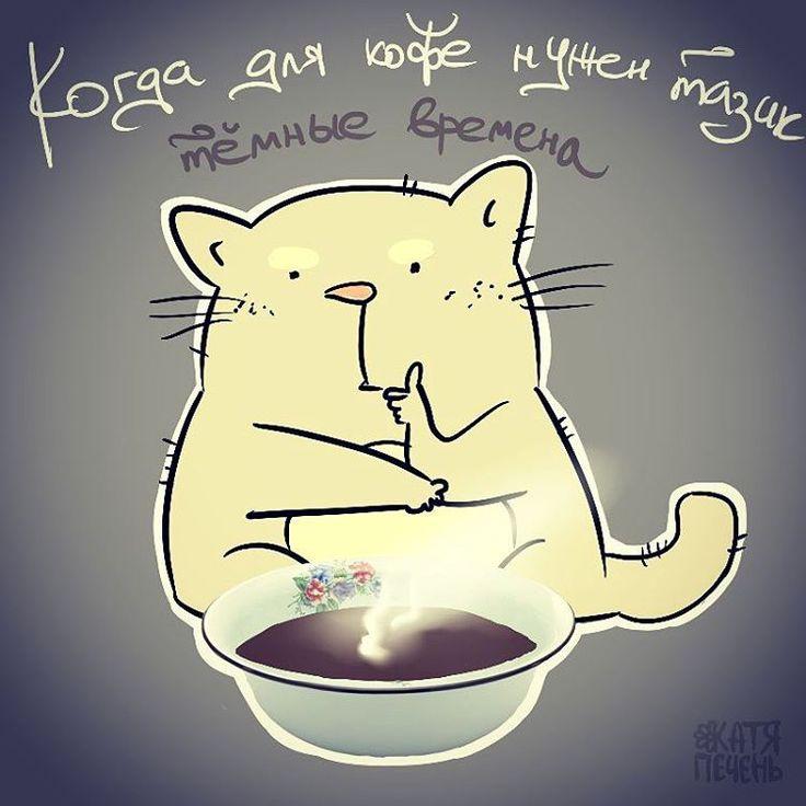 Катя Печень, темные времена, кот, котэ, кошка, кофе