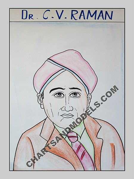 Buy C. V. Raman Charts Online In Delhi Buy colorful, inexpensive C. V. Raman Charts Online for your children school projects available at Online Charts And Models.