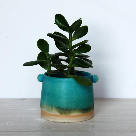 pflanze container blumentopf saftigen topf keramik. Black Bedroom Furniture Sets. Home Design Ideas